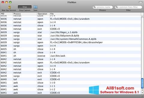 Screenshot FileMon Windows 8.1