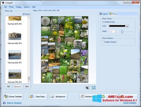 Screenshot CollageIt Windows 8.1